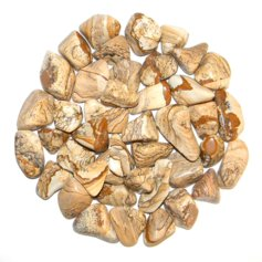 Picture Jasper, tumbled (1 piece)