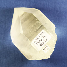 Lemurian Quartz point 009